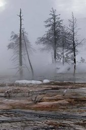 Winter During Freeze at Yellowstone National Park Journal