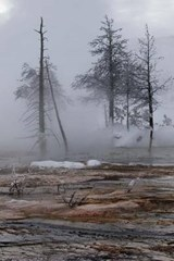 Winter During Freeze at Yellowstone National Park Journal | Cool Image |