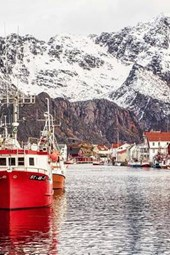 Henningsvaer Harbor in Lofoten, Norway