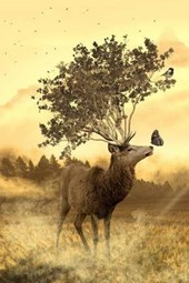 A Deer Growing a Tree Instead of Antlers, Art and Nature