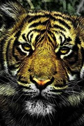 Painted Portrait of a Tiger