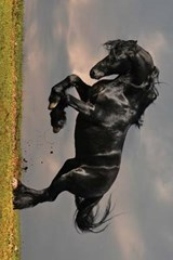 A Beautiful Black Horse Rearing Up | Unique Journal |