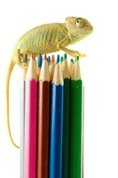 A Chameleon on Top of Colored Pencils