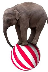 An Elephant on Top of a Ball at the Carnival