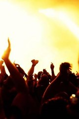 In the Crowd at a Rock Concert | Unique Journal |