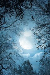 A Blue Full Moon in the Forest | Unique Journal |