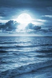 A Blue Moon Shining Down on the Ocean