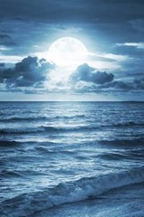A Blue Moon Shining Down on the Ocean | Unique Journal |