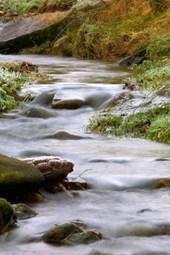 A Fast Flowing Creek in Boulder, Colorado