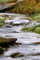 A Fast Flowing Creek in Boulder, Colorado | Unique Journal |