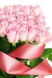 A Perfect Bouquet of Pink Roses Wrapped in a Bow