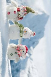 A Happy Snowman Family