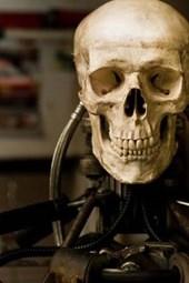 A Steampunk Human Skull