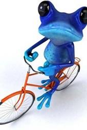 Blue Frog on a Bike