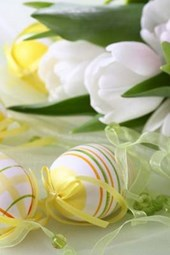Easter Eggs and White Spring Tulips