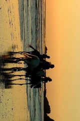 Riding Horses at Sunset on the Oregon Coast | Unique Journal |