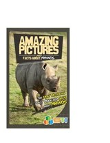 Amazing Pictures and Facts about Rhinos | Mina Kelly |