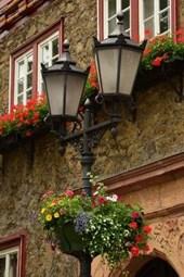 Website Password Organizer Flower Decorated Lantern in Holland