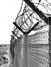 Jumbo Oversized Black and White Razor Wire Prison Fence