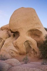 Skull Rock at Joshua Tree National Park California USA Journal | Cs Creations |
