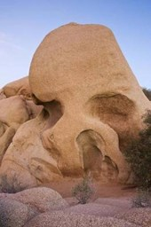 Skull Rock at Joshua Tree National Park California USA Journal