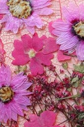 Bright Pink and Purple Pressed Flowers Journal
