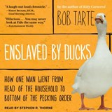 Enslaved by Ducks | Bob Tarte |