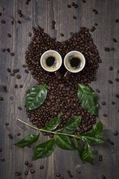 Adorable Coffee Bean and Coffee Cups Owl Art Journal