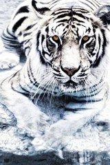 Silver Tiger Journal |  |