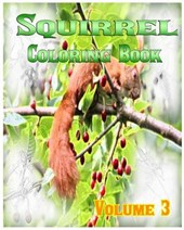 Squirrel Coloring Books Vol.3 for Relaxation Meditation Blessing