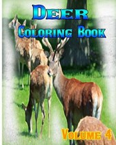 Deer Coloring Books Vol.4 for Relaxation Meditation Blessing | Melissa Kelly |
