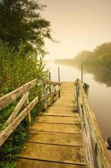 A Weathered Wooden Dock Leading to a Misty Lake Journal | auteur onbekend |