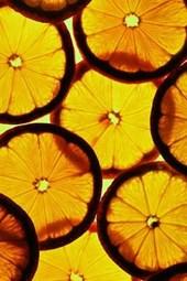 Lemon Slices Journal