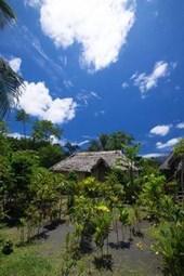 Traditional House in Vanuatu Journal