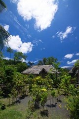 Traditional House in Vanuatu Journal |  |