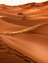 Jumbo Oversized Desolate Sand Dunes in the Desert of Morocco | Unique Journal |