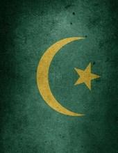 Jumbo Oversized a Cool Flag of Mauritania, Africa