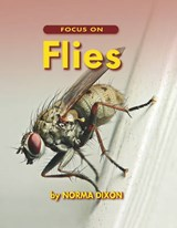 Focus on Flies | Norma Dixon |