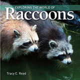 Exploring the World of Raccoons | Tracy Read |