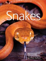 Snakes | David Gower |