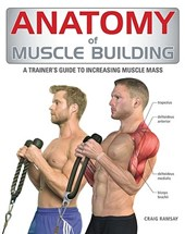 Anatomy of Muscle Building