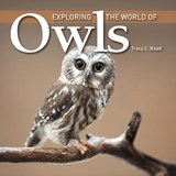 Exploring the World of Owls | Tracy Read |