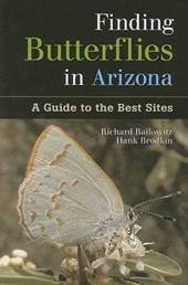 Finding Butterflies in Arizona