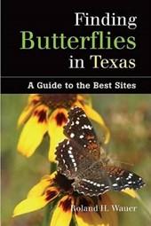 Finding Butterflies in Texas