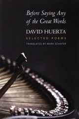 Before Saying Any of the Great Words | David Huerta |