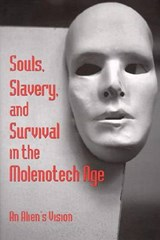 Souls, Slavery and Survival in | Lin Sten |