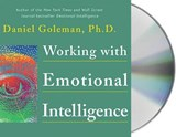 Working With Emotional Intelligence | Daniel Goleman |