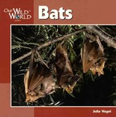 Bats | Julia Vogel |