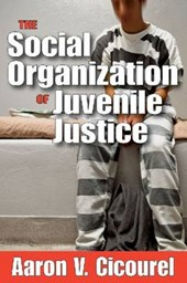 The Social Organization of Juvenile Justice