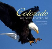 Colorado Wildlife Portfolio